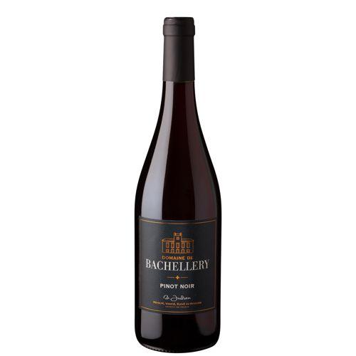 Pinot noir Bachellery
